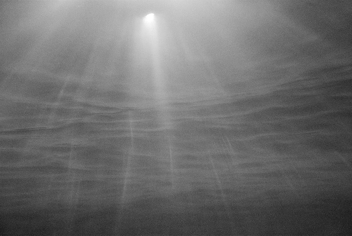 Danielle Dean - Underwater Landscape, Untitled
