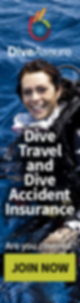 DiveAssureBanner160x600.jpg