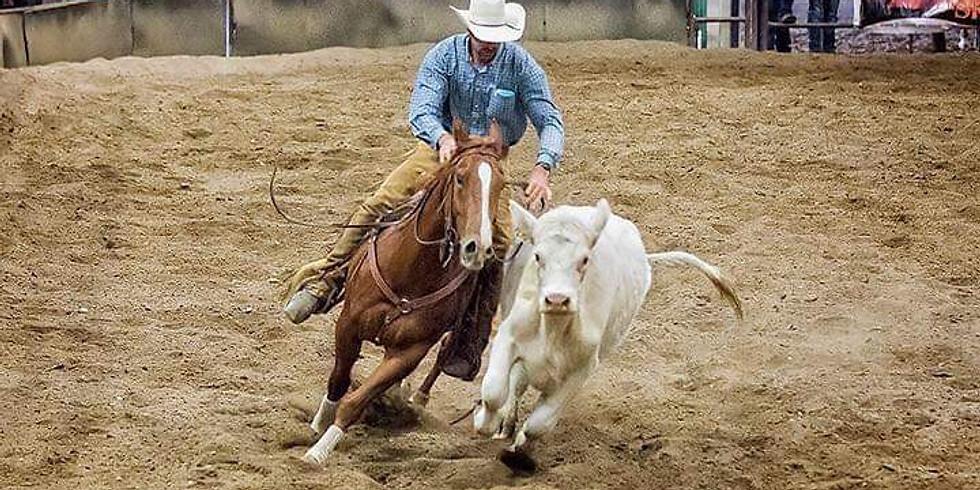 Taylor Douglas Reining / Cowhorse Clinic