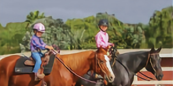 Youth Beginner Riding Lessons