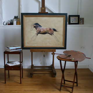 Studio Still life