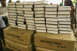 Bibles for the New believers