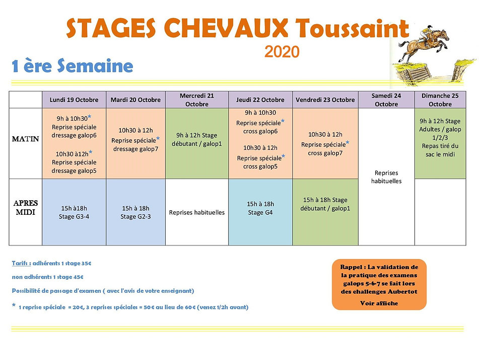 STAGE%20CHEVAUX%201%20OCT%202020_edited.