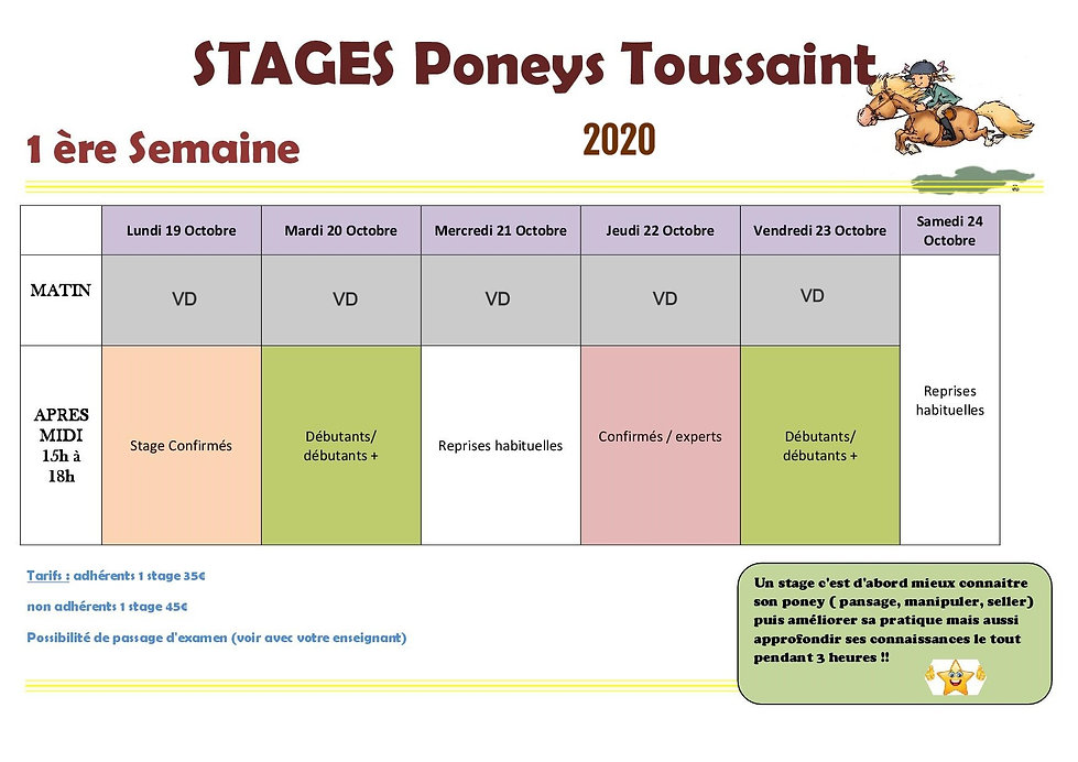 STAGE%20PONEYS%201%20OCT%202020_edited.j