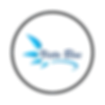 Vista Blue Logo.png