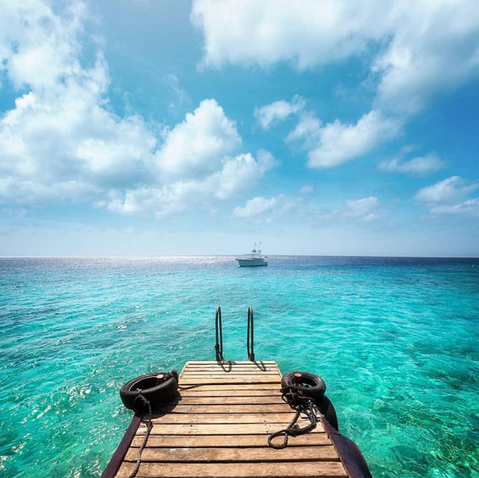 Who wants to jump in paradise?