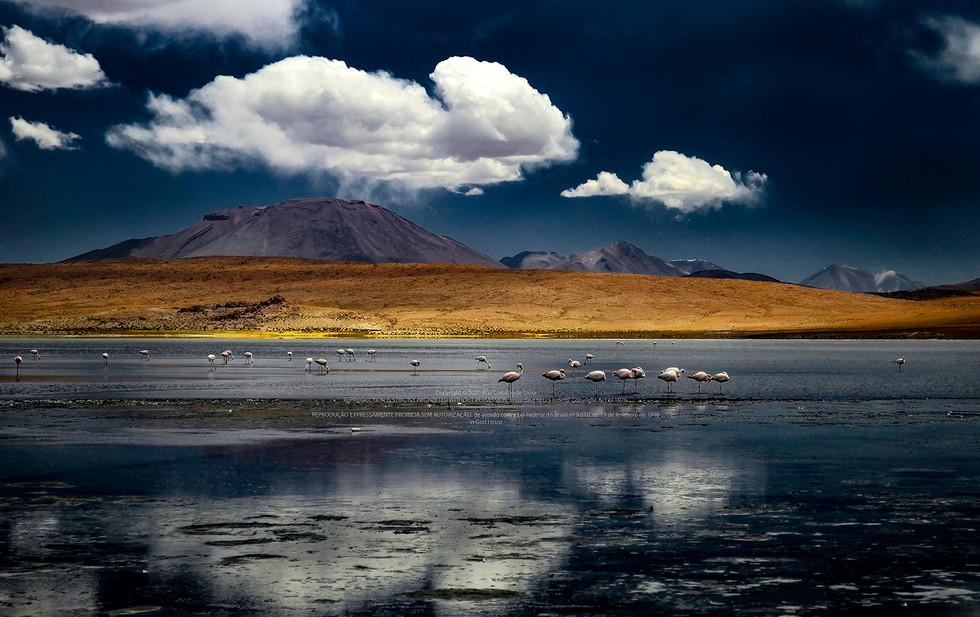 Atacama, Chile - 2012