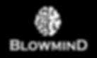 blowmind-logo.png