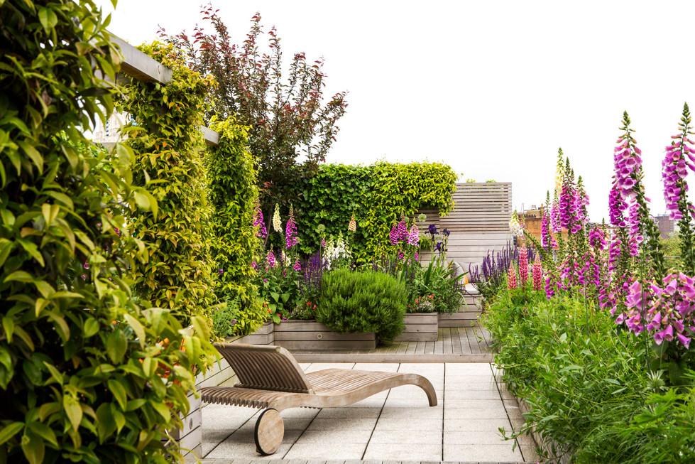 Allsop House garden June'16_MH_1507.jpg