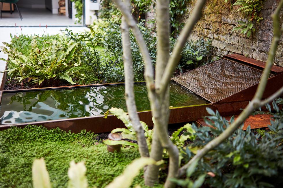 Goldhawk Road garden Sept17_0192.jpg