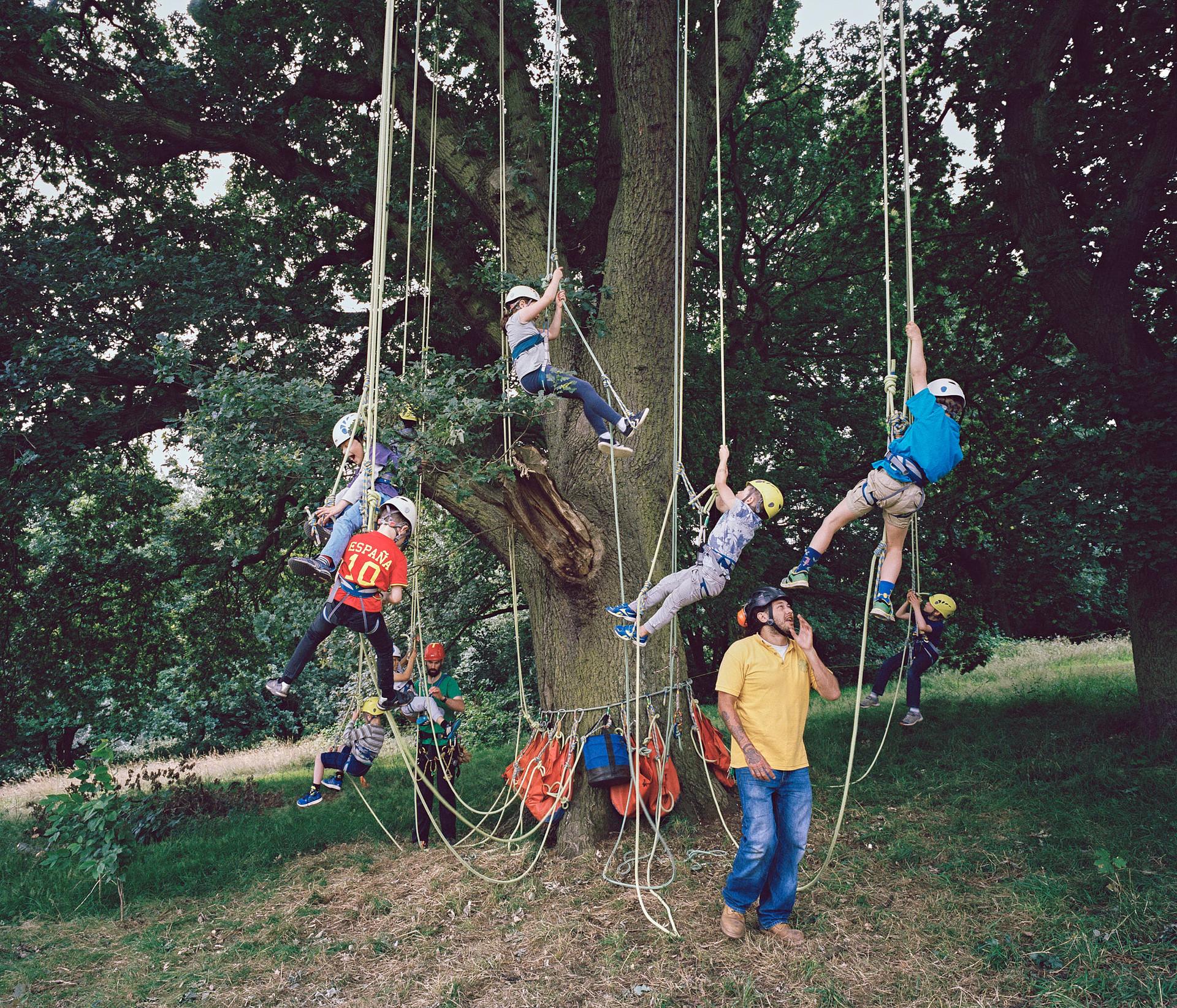 Zone 3_tree climbing.jpg