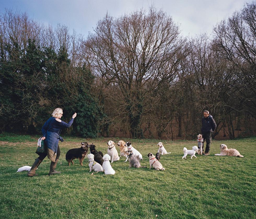 Zone 3_dog walker.jpg