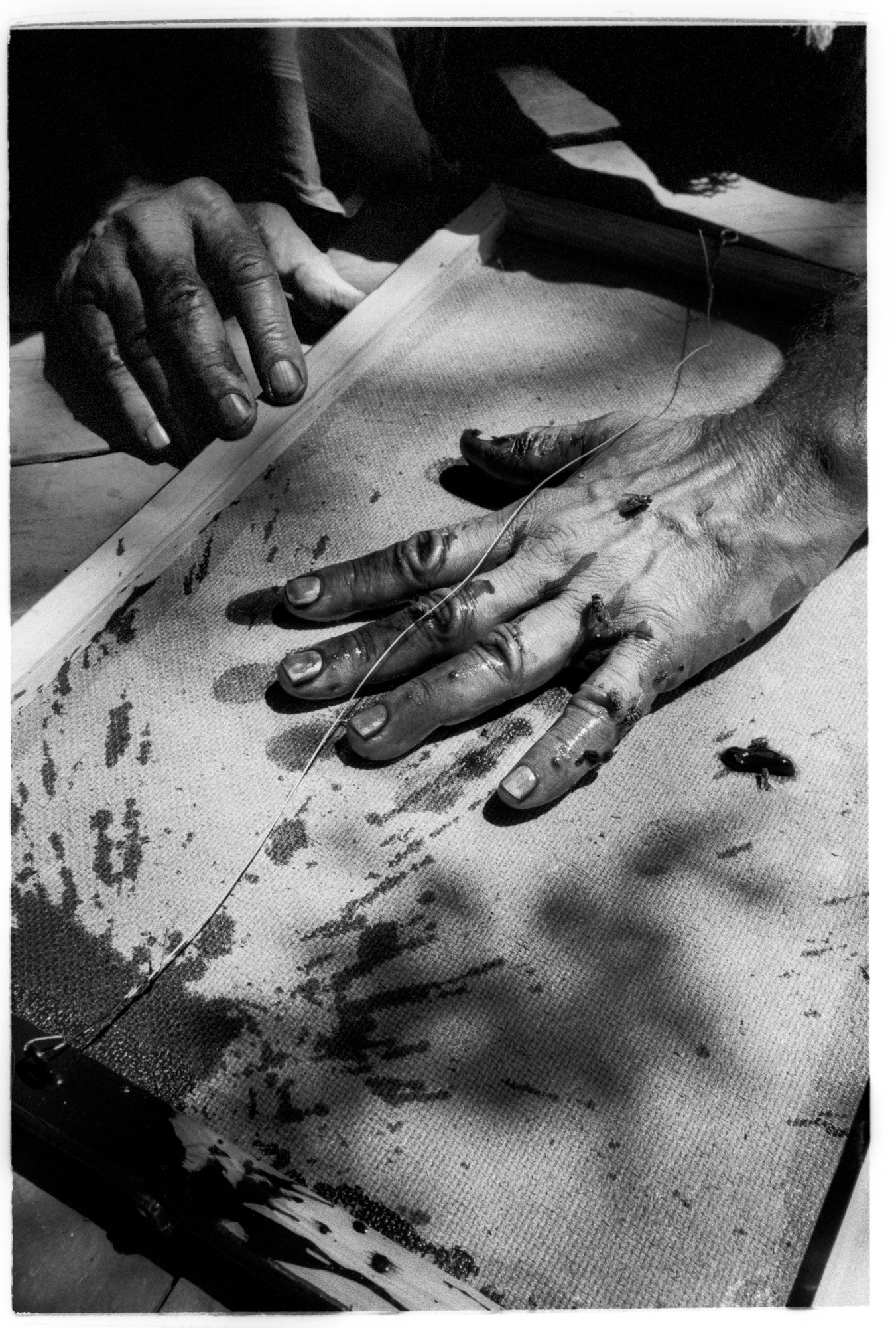 Peter Beard hand print #1