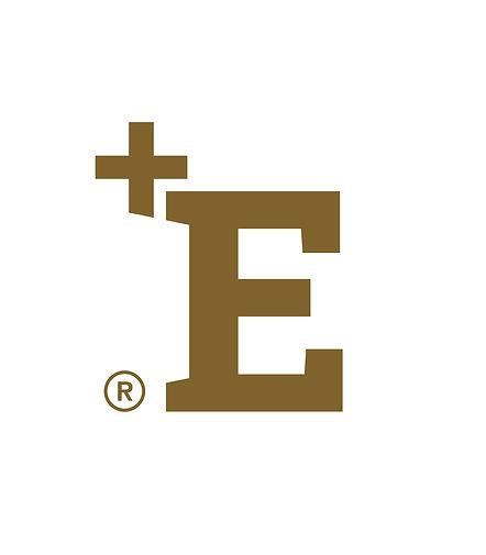 CMYK_+E-Logo_Marke_gold_Schutzraum.jpg