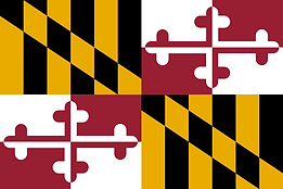 Private Investigation MD flag