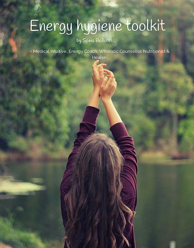 Energy HygieneToolkit