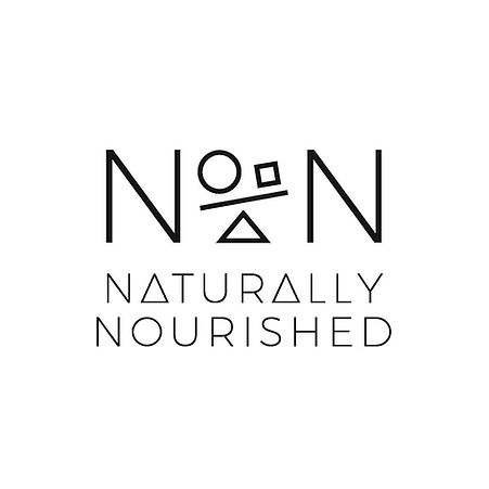 NN logo high res .jpg