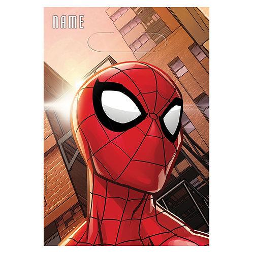 Spider-Man™ Webbed Wonder Folded Loot Bags