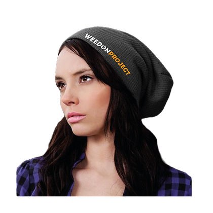 Project Beanie