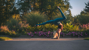 Psychological Flexibility- The Key to Ultimate Wellbeing?