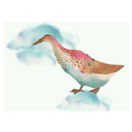 duck web laura aubert.jpg