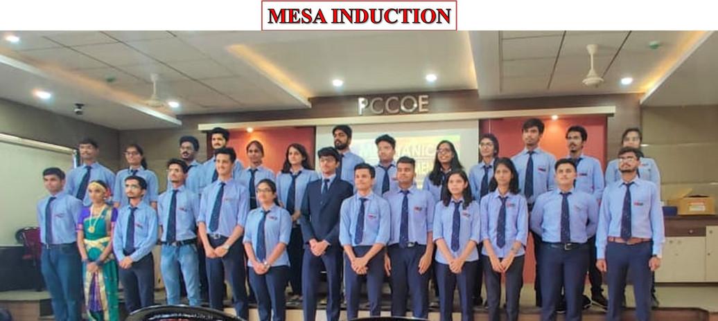 mesa_induction.jpg