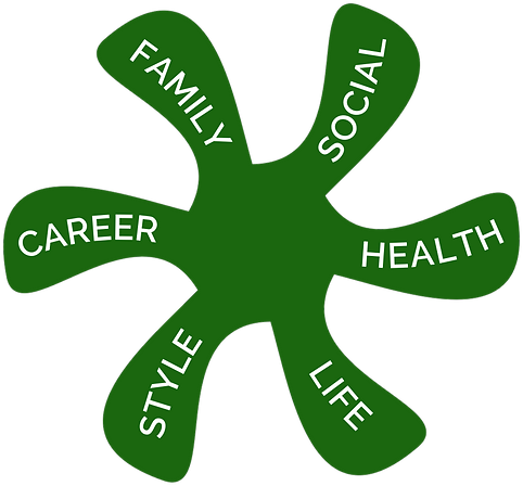 wheel of life,life coach,personal coach,executive coach,business coach,career coach