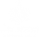 Logo DIF Jalisco (2).png