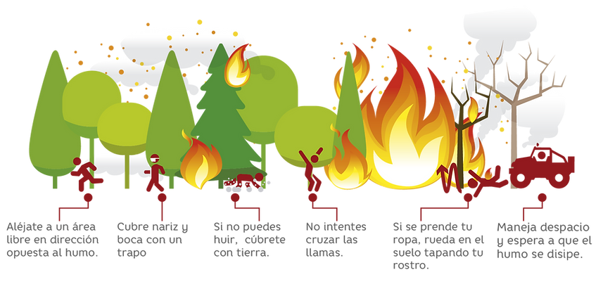 incendios forestales-03.png