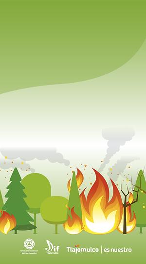 web incendios, lluvias e invierno_Mesa d