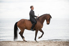 Student of the Horse: The Genuine Horse Development Course