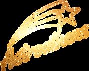 Astroathens-logo-texture-4-1.png