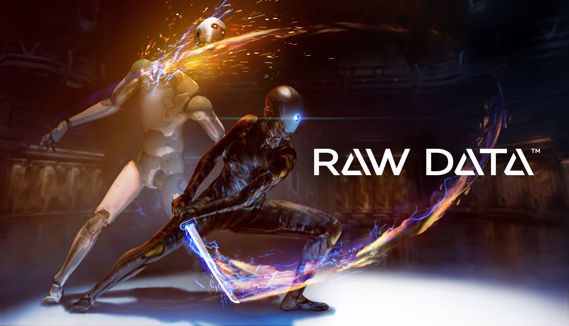Survios - Raw Data