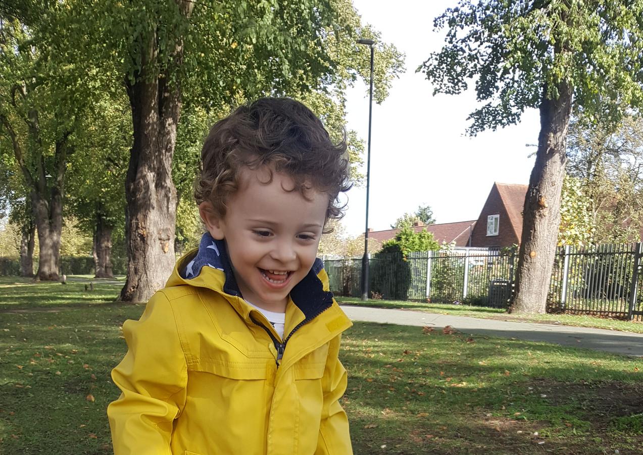 M&S Yellow Jacket