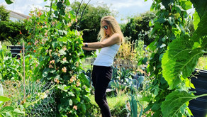 'Allotments are good for the mind, body and soul'