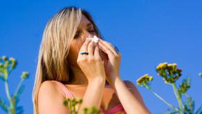 Top ten tips for reducing hayfever symptoms