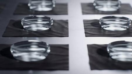 Nikon Z series Design concept movie
