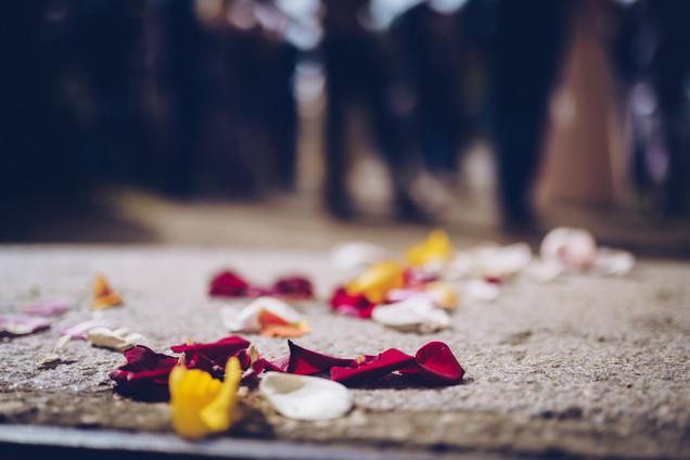 Hochzeit_Laura_&_Hannes_-_Webauflösung_