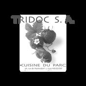Tridoc-SA.png