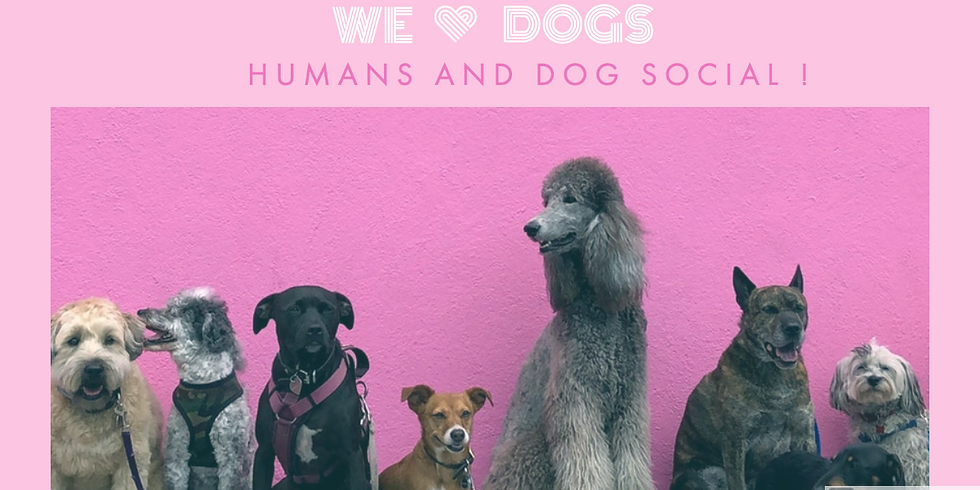 Humans and Dogs Social