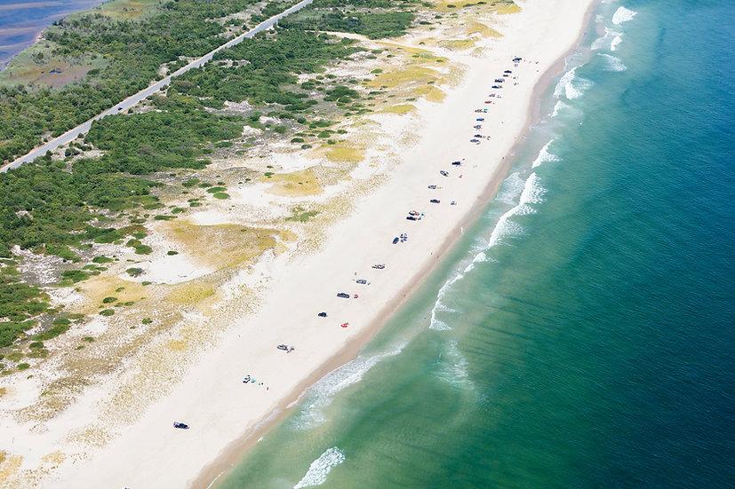 Island Beach State Park IV