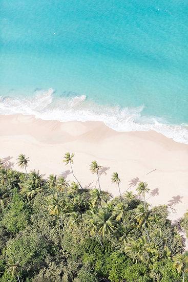 Puerto Rico Shoreline IV