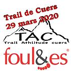 logo tdc 2020.png