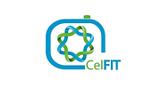 CelFit helps people to get in a better shape though a better diet, offering personalized advice and supporting customers to succeed with their own goals.
