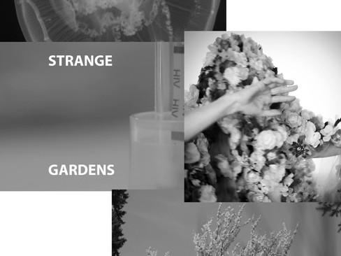 STRANGE GARDENS - a multimedia collaborative live cinema/dance project.