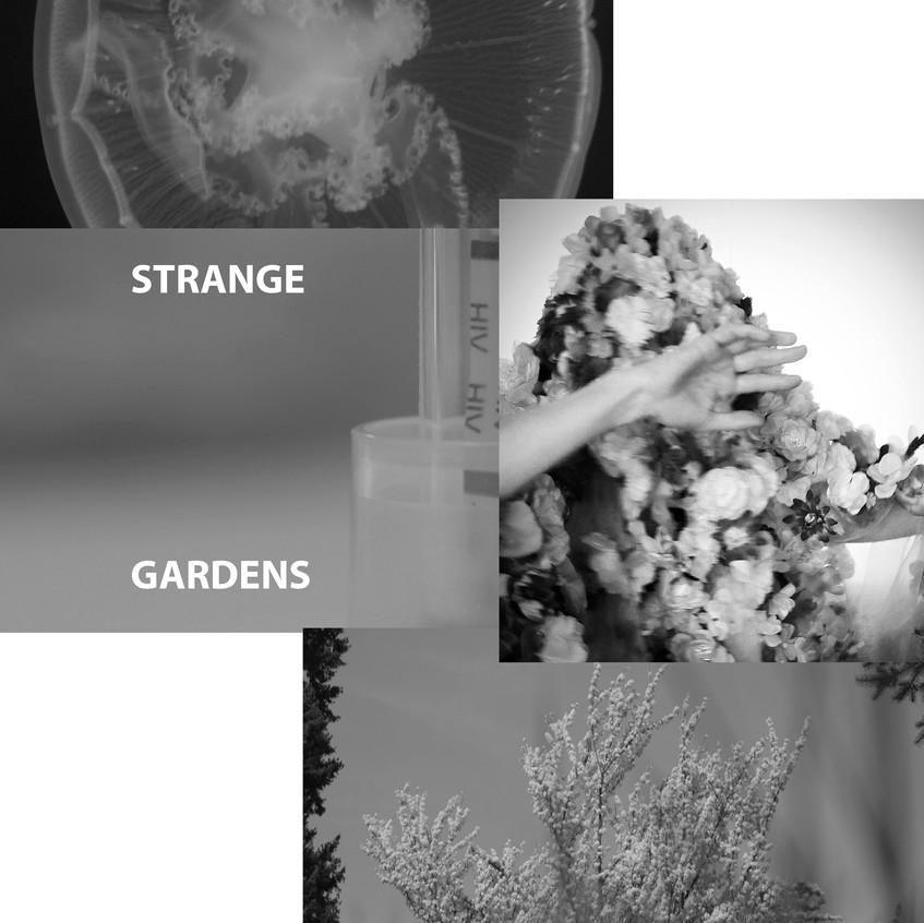 Strange Gardens