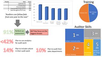 2017 Internal Audit Priorities
