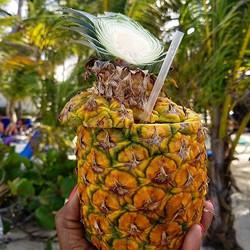 Guess what's in this pineapple_ _#pineapple #RIU #puntacana #drinks #beachbum #sand #dominican #minn
