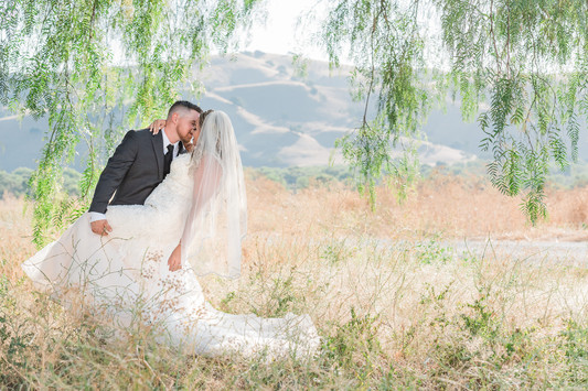 Paicines Ranch pepper tree Bride and Groom