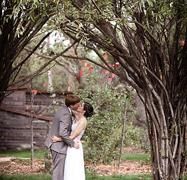HarterPluymWedding[2016-11-05]IMG_1202.j